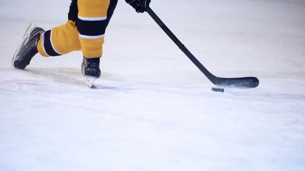 hockey brakes
